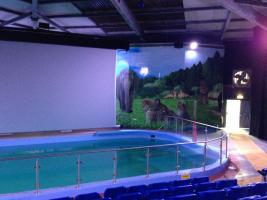 Large 3D screen moves in near sea lions in Woburn Safari Park