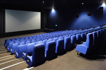 Professional cinemas Picturehouse Fact