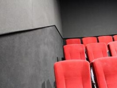 Wall carpets and flooring for cinemas, theatres and multi-use spaces