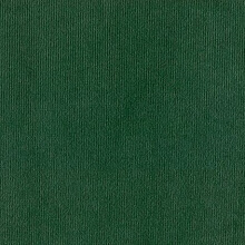 Applause Velvet Velour Green