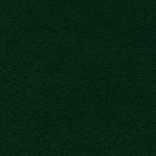 Display Felt Dark Green (24)